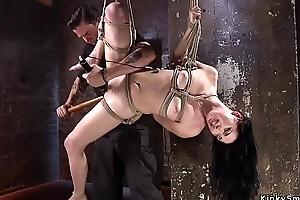 Pretty babe captured in hogtie bondage